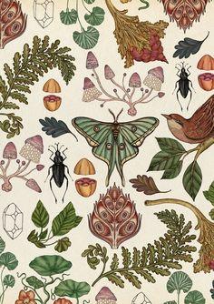 prints art design Penguins Are Dancing on My Windowsill Art Inspo, Kunst Inspo, Scientific Drawing, Impressions Botaniques, Motif Art Deco, Illustration Botanique, Vintage Invitations, Aboriginal Art, Art Floral