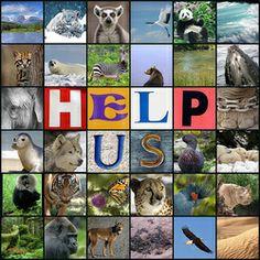 Eco Education: Conservation lesson plans.