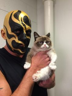 Grumpy Cat and Goldust Wwe Goldust, Ready To Rumble, Wrestling Wwe, Wwe Superstars, Grumpy Cat, Deadpool, Spiderman, Dustin Rhodes, Superhero