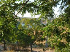 Parque de Campismo da Albufeira do Maranhão, Avis