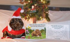 Clark the Mountain Beaver is ready for the holidays and ready to be Santa's helper delivering books far and wide!