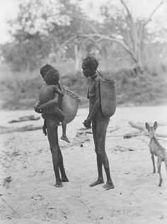 First Australians -Aboriginal Women, Northern Territory, dingo (dog)   1928. Photo taken by Herbert Basedow