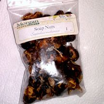 Spicy DC Blog: Three Reasons to Start Using Soap Nuts Now