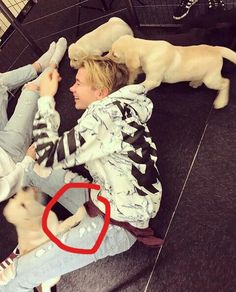 ❤Martinus with dogs❤ Dream Boyfriend, Do Homework, Twin Brothers, Cool Socks, My Crush, Handsome Boys, To My Future Husband, Cute Guys, Boy Bands