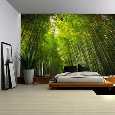 Amazon.com: Wall26® - Sun Shining on a Hidden Trail in a Forest - Wall Mural, Removable Sticker, Home Decor - 100x144 inches: Home & Kitchen