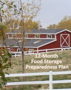 12-Month Food Storage Preparedness Plan