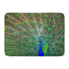 Peacock Home Wall Decor A4 Photo Print Poster Art Feathers Spread Spreading temp