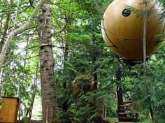 "Spherical Tree House  This ""Spherical Tree House"" sits high in the trees and is accessible by a suspension ladder. These sphere homes are for sales at the FreeSpiritSpheres.com.    Read more: http://www.nydailynews.com/life-style/real-estate/world-craziest-homes-gallery-1.44618#ixzz1rD2d1JYk... This is number 31 of 56 of the World's Craziest Homes.  You HAVE to see them all - follow the link :)"