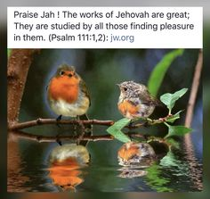 Jehovah S Witnesses, Jehovah Witness, Bible Scriptures, Bible Quotes, Bible Text, Everlasting Life, Artwork Pictures, Faith In God, Good Morning Quotes