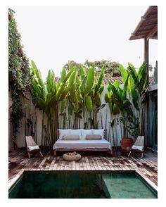 backyard bliss #tuquoiseandtobacco