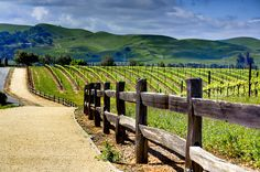 Livermore California. It really is this beautiful!