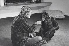 It's like teaching chimps