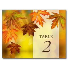 @@@Karri Best price          Falling Autumn Leaves Fall Table Number Cards Postcard           Falling Autumn Leaves Fall Table Number Cards Postcard We have the best promotion for you and if you are interested in the related item or need more information reviews from the x customer who are own of th...Cleck Hot Deals >>> http://www.zazzle.com/falling_autumn_leaves_fall_table_number_cards_postcard-239640191078219672?rf=238627982471231924&zbar=1&tc=terrest