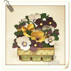 Springtime Box Cards - Pansies Box Card