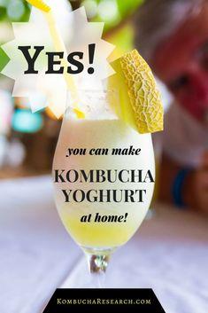 DIY recipe for Kombucha yoghurt. Make yogurt iwth a kombucha scoby. Kombucha Research. Kombucha Science.
