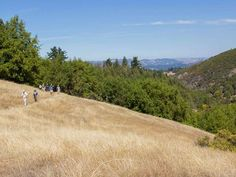 Guide to Hiking in Sonoma County | Sonoma County (Official Site)