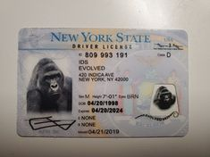 Evolved Ids Products Drivers License California Id Card Template Evolve