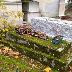 Cemetery Statues, Cemetery Flowers, My Pinterest, Famous French, Ceramic Flowers, November 2013, Cathedrals, Crosses, Dyi