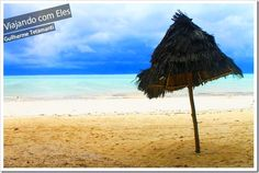 Zanzibar é a principal ilha da Tanzânia, famoso destino de viagem para turistas que escolheram a África para viajar nas férias. Sua história é rica e há muito o que fazer em Zanzibar. Existem vários passeios para conhecer os animais da ilha, como golfinhos, tartarugas gigantes e também uma espécie de macacos bastante tranquilos que só existem na ilha.