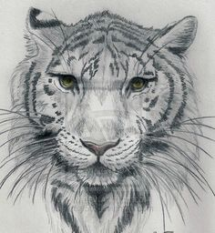 awesome sketch. possible tat idea?
