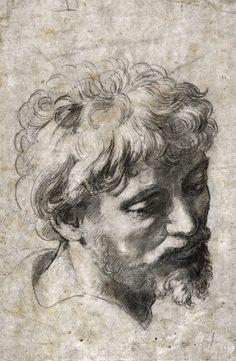 Raphael -Paint Watercolor Create