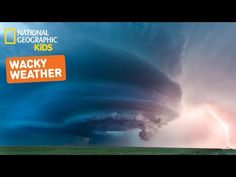 Nat Geo Kids Wonder About Weather - natural disaster videos. Preschool Weather, Weather Science, Weather Unit, Weather Activities, Weather And Climate, Science Activities, Weather Kindergarten, Science Experiments, Teaching Weather