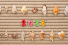 New year 2016 written in the sand and shell, with space for your text