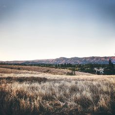 Good morning #napavalley (during #fall) . #instamoment #instamood #sunrise #travelphotography #travelgram #traveler #naturelovers #nature #outdoors #explore #discover #mornigwalk #hiking #organic #skylovers #producerlife #christianartist #filmmaker #photographer #naturephotography #earth #travel . Photo by: @haroldopoiret