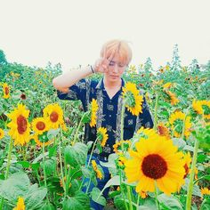Young K being at one with the sunflowers - Day6
