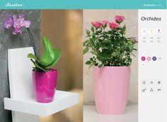 Santino Orchidea Decorative plastic Flower pot planter home garden office patio #Santino
