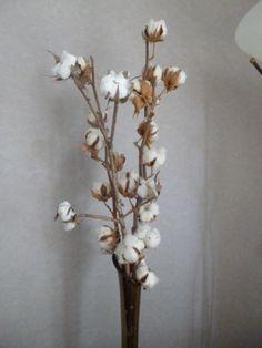 Vrais et fausses fleurs rassemblées en bouquet