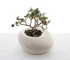 Love the simple elegance of this Small Sculptural Planter handmade by LandMstudio on Etsy, $55.00