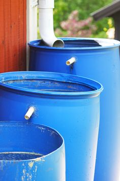 DIY Rain Barrels - Backyard Designs & Landscaping Ideas Bepflanzung Top Water Filters And DIY Rain Barrels Rain Barrel System, Water Barrel, Water Collection, Rainwater Harvesting, Veg Garden, Water Storage, Diy Garden Projects, Cool Diy, Outdoor Gardens