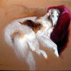 Borzoi on Sofa