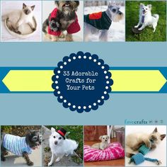 33 Patterns for Pet Clothing and More Pet Crafts
