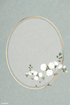 Framed Wallpaper, Flower Background Wallpaper, Cute Wallpaper Backgrounds, Flower Backgrounds, Background Patterns, Cute Wallpapers, Eid Background, Fond Design, Flower Graphic Design