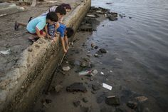 Children try to catch a crab on the polluted shore of Guanabara Bay in Rio de Janeiro, Brazil on Saturday, July 30.