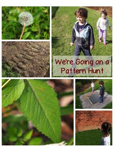 *Analyzing how both repeating and growing patterns are generated* We're Going on a Pattern Hunt … Forest School Activities, Nature Activities, Math Activities, Outdoor Activities, Science Nature, Summer Activities, Outdoor Education, Outdoor Learning, Outdoor Play