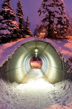 Snow Tunnel, Bavaria, Germany