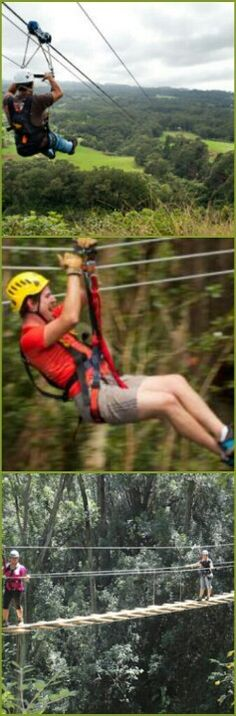 Zipline tours Hawaii! & Big Island Kohala Canopy Zipline Adventure | Locals | Pinterest ...
