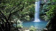 Jungle Water Slide - Costa Rica - Buscar con Google