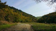 Cheile Turenilor în Copăceni, Cluj Country Roads
