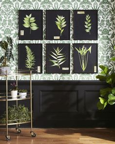 Why You Should Be Decorating with Houseplants | How to Decorate