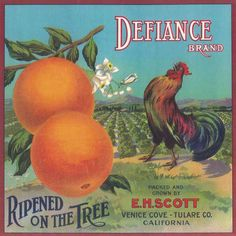 DEFIANCE. Orange Label. Venice Cove - Tulare. California (USA)
