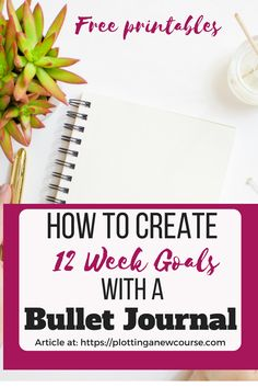 No matter what you're trying to achieve, if you don't set goals and the tasks you'll need to accomplish them, you're doomed to fail. One way to help you create a list of goals and tasks is with the help of a bullet-list and a journal. And using the 12 week system motivates and focuses your efforts. #accomplish #goalsetting #12weekyear #personalgoals #howtosetgoals