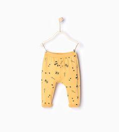 9f11c1c0b12 Imagem 1 de Legging guaxinins da Zara. Gisele Marciniak · calcas baby