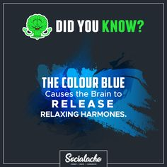 #DidYouKnow The Colour BLUE causes the Brain to Release Relaxing Harmones. . . . #Socialache #tuesdaytruth #socialmediasolutions #colorblue #blue #relaxing #socialmediamarketing #socialmedia #contentcreator #contentmarketing #digitalmarketing #seoservices #digitalmarketingagency #digital #followme #dream #brandingsolutions #branding #socialtips #passion #websitebuilder #entrepreneurlife #business #millionairemindset #businessowner Social Media Marketing Companies, Social Media Branding, Content Marketing, Internet Marketing, Effective Marketing Strategies, Professional Seo Services, Content Analysis, Best Digital Marketing Company, Brand Management