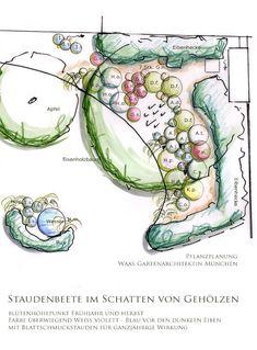 Pflanzplan schattiger Garten mit Beeten für Stauden, Gräser und Farnen