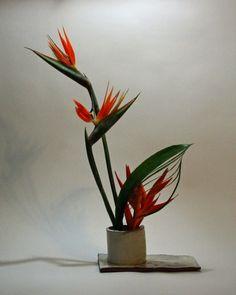 Ramón se va a Japón: Arreglo floral (ikebana, いけばな, 生け花)