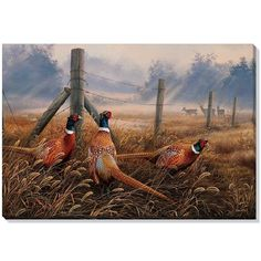 6736be6f542 Pheasant Canvas Wall Art | Wild Wings | F593492619 Wildlife Decor, Wildlife  Art, Hunting